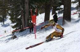 Giant Slalom Action