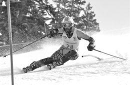 Slalom Action